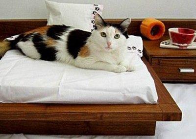 Berbagai Model Tempat Tidur Minimalis dan Klasik Serta Harganya